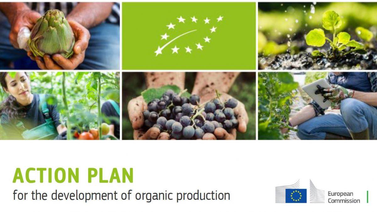 Action plan Bio
