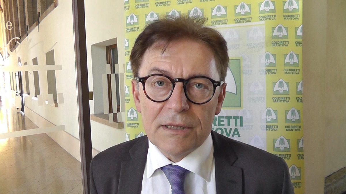 Angelo Frascarelli