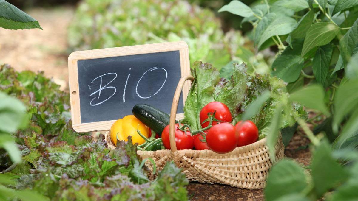 Etichetta-biologica