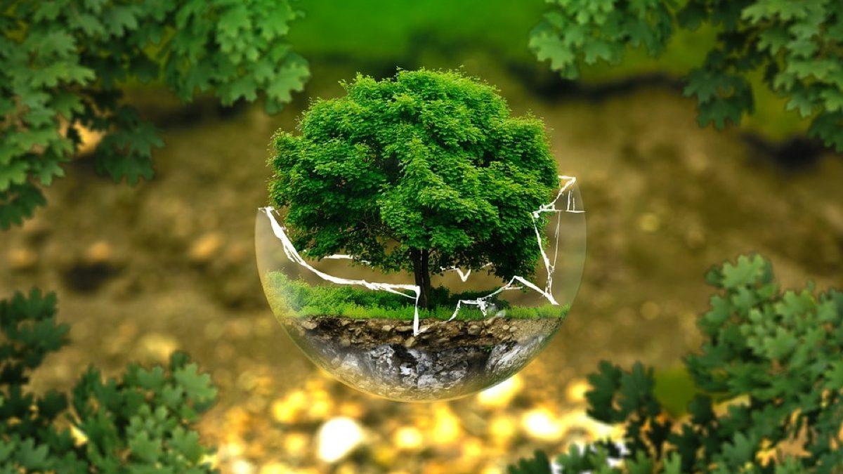 environmental-protection-326923_960_720